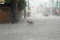 El huracán Matthew pasó por Haití y avanza hacia Cuba y Estados Unidos